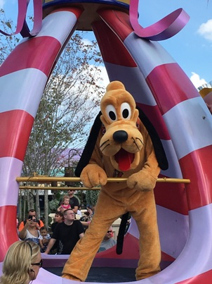 Pluto in Disney World Parade